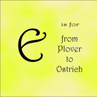 E for ostrich